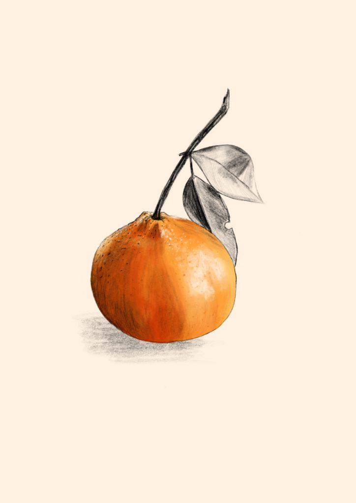 clementine-alieenor-digital
